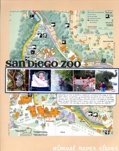 Scrapbook Layout: San Diego Zoo by Natalie Parker