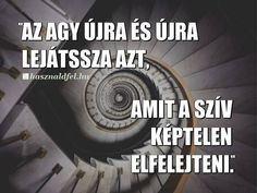 Quotations, Texts, Psychology, Motivational Quotes, Life Quotes, Touch, Hungary, Diy, Photography
