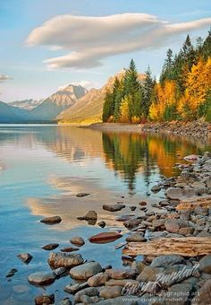 Glacier National Park, Montana - , God's amazing creation, beauty, nature, NBTT, http://nothingbutthetruth.org/