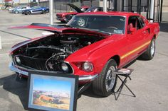 10 Cool Mustangs for the Pony Car's Anniversary
