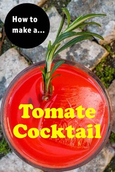 Follow our easy recipe and make a Tomate cocktail at home in just two minutes. This fruity pastis drink tastes like the South of France in a glass. | Tomate Recipe | Tomate Cocktail Recipe | Pastis Drink | Pastis Cocktail | French Cocktail | Summer Sipper | Christmas Cocktail | Red Cocktail | Red Drink