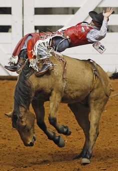 """Kash Wilson hangs on aboard """"Wrangler Bucks"""" - No other entertainment is the same as the rodeo..."""