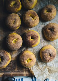 Looking for an easy, show-stopping recipe for weekend brunch? Try these no-knead pumpkin spice sourdough bagels topped with cinnamon sugar. Pumpkin Bagel Recipe, Pumpkin Bread, Pumpkin Puree, Pumpkin Recipes, Pumpkin Spice, Cinnamon Bread, Fall Recipes, Sourdough Bagels, Sourdough Recipes