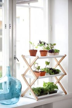 Though we have many indoor garden ideas on our Pinterest, the simplest and most affordable ways to add greenery to your space are through setting flowers and plants from a local nursery on a windows...