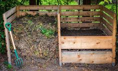 Make your garden extra green by using these tips for an eco-friendly garden