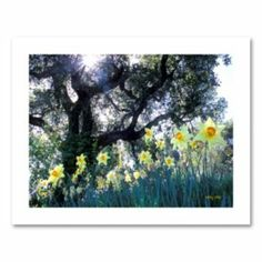 """Daffodils and The Oak"" Canvas Wall Art by Kathy Yates"