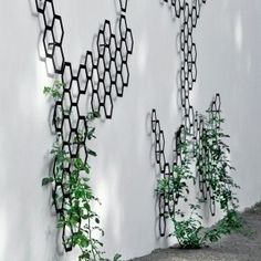 honeycomb trellis