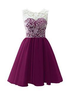 Dresstells® Women's Short Tulle Prom Dress Dance Gown with Lace Grape Size 2 Dresstells http://www.amazon.com/dp/B00R7JW37A/ref=cm_sw_r_pi_dp_VLJqvb10YQRP5