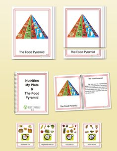Nutrition, Early Childhood | Montessori Research and Development