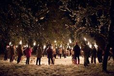 Wassailing the apple trees on the eve of the Twelfth Night