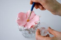Five petal fantasy flower 3