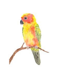 Blank Greetings Card Hyacinth Macaw Ann Richmond Studio