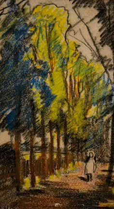 straat met bomen