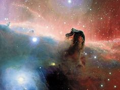 "Horsehead Nebula (Barnard 33). A dark molecular cloud, roughly 1,500 light years distant in the Orion Nebula, it's visible because it's silhouetted against another, brighter nebula. The prominent horse head portion of the nebula is just part of a larger cloud of dust which can be seen extending toward the bottom of the picture. (Credit   Copyright: Jean-Charles Cuillandre   Hawaiian Starlight, CFHT) Mona Evans, ""Nebulae"" http://www.bellaonline.com/articles/art43407.asp"