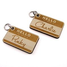 'Hello My Name Is' - ID Tags for Animals.