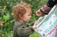 10 U-Pick Apple Orchards in Washington