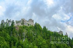 Ehrenberg Castle On The Hill by Amy Sorvillo