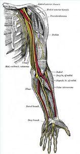 Natural Treatments for Peripheral Neuropathy thumbnail