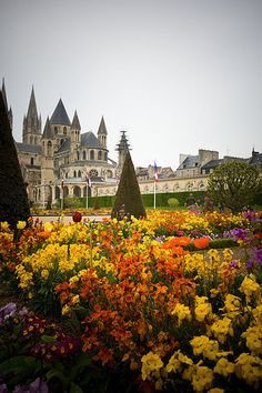Abbaye-aux-Hommes ~ Normandy , France YES  TRES   BEAU   ,,,,,,,,**+
