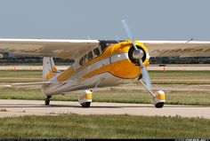Cessna 195 aircraft picture
