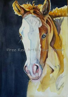 Check out this item in my Etsy shop https://www.etsy.com/listing/249073540/foal-in-sunlight-12-x-16-watercolor