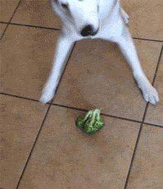 Eu! Tentando comer a salada rs