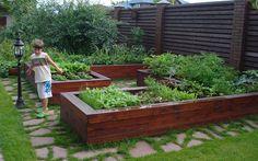 Декоративный огород: фото оформления и идеи красивого дизайна декоративных огородов в саду