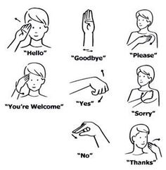 The letters of the alphabet in American Sign Language.