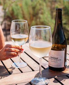 À la terrasse avec Henri  A relaxed Labor Day rendezvous with our 2015 Le Chenin  Feliz lunes amigos!  #HenriLurton  #BordeauxinMexico