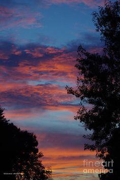 ✯ Virginia Sunset