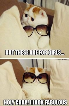 I Look Fabulous #humor #lol #funny