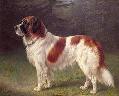 Dog Painting - Saint Bernard by Heinrich Sperling