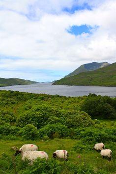 Beautiful #Ireland
