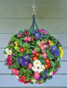 DIY: How to Create a Hanging Flower Ball. A great video turorial here: http://www.oregonlive.com/hg/index.ssf/2013/10/bring_back_some_color_with_a_f.html NOTE Good tut using 2 baskets and ideas for plant care and growing spot