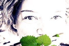 kochtrotz – Rezepte für Fructose-Intoleranz, Laktose-Intoleranz, Gluten-Unverträglichkeit, Histamin-Intoleranz, Zöliakie, Sorbit-Intoleranz - So lebt es sich mit allen Nahrungsmittel-Intoleranzen und Unverträglichkeiten, die es gibt.