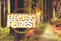 2015 Electric Forest Festival Lineup Announced