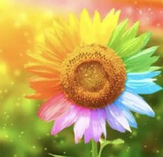 Diamond Picture, Sunflower Pictures, Sunflower Wallpaper, Diamond Art, Diamond Cross, 5d Diamond Painting, Cross Paintings, Art Paintings, Rainbow Colors