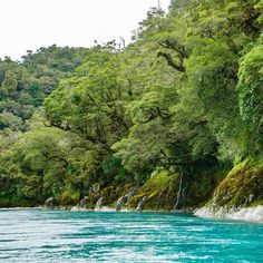 Places like this stir something deep within my soul. #queenstownrafting #landsboroughriver #ichoosecleanwater #millionmeters #nzwaterfalls #water_perfection