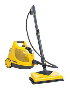 best bed bug vacuum and steam cleaners