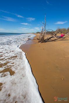 Rules Beach near Baffle Creek - Queensland, Australia