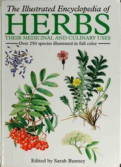 Illustrated Encyclopedia of Herbs by Edited by Sarah Bunney 0880297743 9780880297745 Academic Art, Girl Cakes, Homeopathy, Green Beans, Herbalism, Herbs, Illustration, Plants, Pdf