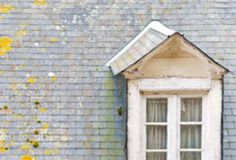 Home Maintenance: Inspecting Your Roof