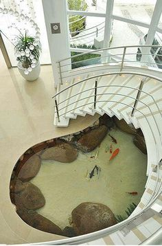 koi pond. winding stairs