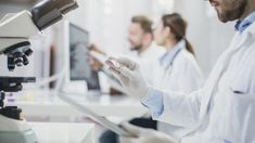 prostata e tumore renewal
