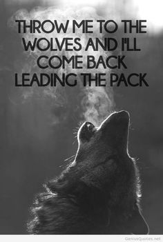 wolf pack sayings quotes Wolf Quotes, Me Quotes, Motivational Quotes, Inspirational Quotes, Wolf Pack Quotes, Horse Quotes, Girl Quotes, Great Quotes, Quotes To Live By