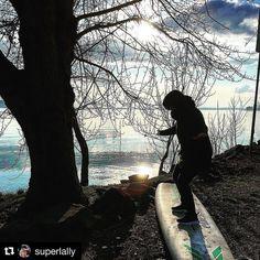 #Repost @superlally  Remember/ tour/ winter/ lake #italy #lagostrasimeno #trasimenolake #lake #umbria #umbriagram #me #surf #voglidimare #sun   #nature #toptags @top.tags #sky #nature_lovers #nature_brilliance #ff_nature #naturephotography #natureshots #outdoors #winter #wintertime #winterwonderland #winteriscoming #winterfun #naturelovers #winterishere #winterbreak #letitsnow