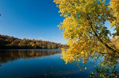 Farbenspiel im Herbst am Gemündener Maar