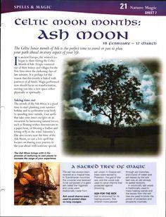 Enhancing Mind Body Spirit  21 Nature Magic Card 7 Celtic Moon Months: Ash Moon