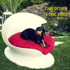 Products of #Design thought for your #dog | Prodotti di Design pensati per il tuo cane #Chic4Dog