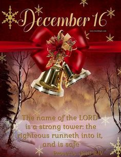 Come on in, sit a while and enjoy beautiful words of faith, family, love and more. Christmas Blessings, Christmas Countdown, Christmas Wishes, Merry Christmas, Christmas Time, Xmas, Happy New Month Quotes, December Quotes, December Images